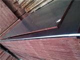 Grado de la madera contrachapada WBP de la construcción primer del pegamento de la base concreta del álamo