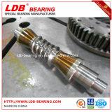 Крупноразмерный 25 дюймов двойного привода Slewing глиста, привода глиста, модельного Se25-2