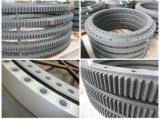 Cuscinetto a rullo cilindrico Cuscinetto-Attraversato sezione sottile (SX011880)