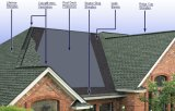 5 telhas do telhado do asfalto do tipo de Hongyuan das formas