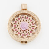 Nueva inoxidable de la llegada de la moneda Flor de acero Fit Locket