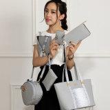Onlinesystem-China-Luxuxform-Diensthandtasche eingestellt für Damen