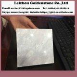 고품질 흐린 회색 대리석 돌 도와는 공장을 소유한다