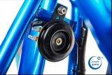 中国からのEtwow S8 36V 1000W 2の車輪都市Eスクーター