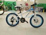 20 детей велосипед размера MTB, велосипед малышей, ягнятся Bike
