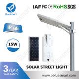 Bluesmart 세륨 RoHS FCC 작동 최빈값 Settable 150lm/W 30W LED 태양 에너지 가로등