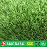 Relvado do diamante e Artificial Grass para o jardim (amf41625L)