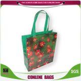 PVC Spigeon印刷のジッパー袋(KLY-PVC-0011)