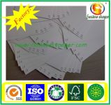 450GSM Box Board Paper Factory vente