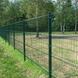 O plástico verde revestiu o painel soldado segurança da cerca do engranzamento de fio