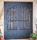 فولاذ باب مع يليّن زجاج وشامة