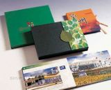 Brochure d'affaires / Brochures imprimées / Brochure Impression