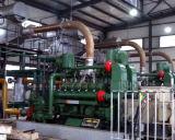Küche-überschüssiger und Tierabfall der Biogas-Pflanze, zum von Elektrizität festzulegen