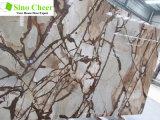Tegel van de Plak van de tulp de Bruine Marmeren, Beste Verkopende Grote