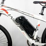 2016販売のために電気熱い販売のリチウム電池の電気自転車