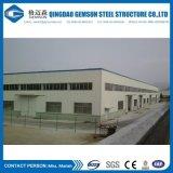 Liberare la costruzione prefabbricata /Warehouse d'acciaio della struttura d'acciaio del gruppo di lavoro della struttura di disegno