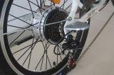 Stadt-elektrische Fahrräder (TDN1101Z) mit
