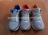 Trois couleurs pour des chaussures de sport des hommes