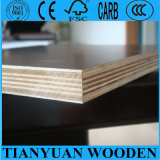 Erstes Grade 18mm Film Faced Plywood für Building Material/Shuttering Plywood