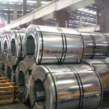 Холоднопрокатный лист цены катушки нержавеющей стали стальной