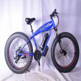 Ökonomisches mini elektrisches Fahrrad für normale Leute-Fahrt (OKM-903)