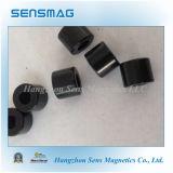 De Magneet van NdFeB van de ring, de Permanente Magneten van het Neodymium