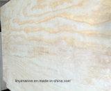 grado de la madera contrachapada C/D del pino de 1220*2135m m para el embalaje