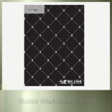Волосяного покрова вибрации Ti лист нержавеющей стали цвета черного декоративный