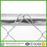 Cane Breeding della gabbia del grande metallo esterno di collegamento Chain