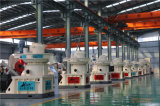 Máquina de madera de la prensa de la pelotilla para la fabricación de la pelotilla en China
