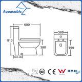 Туалет цельного двойного плюша Siphonic керамический (ACT9322)