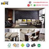Sofá Home moderno da sala de visitas da mobília (HC8101)