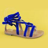 Sandali del legame della signora Blue Velvet Belt Flats Ankel per le donne