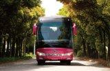 Bus di lusso Slk6118A del passeggero di disegno astuto e magnifico