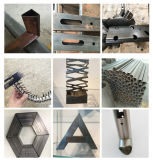 Tondo/quadro/tagliatrice rettangolare/speciale del laser del tubo