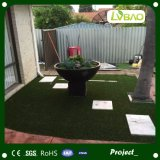 Hierba artificial cómoda del jardín que ajardina para el animal doméstico