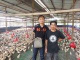 Добавка питания Unigrow для Breeding цыпленка
