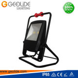 Im Freien LED Flut-Licht der Qualitäts100w für Park mit Cer (FL110-100W)