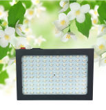 diodo emissor de luz Grow Light de 216W Hydroponic com 90degree Lense