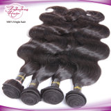 Cabelo humano malaio de Ásia da venda por atacado do Weave do cabelo de Remy
