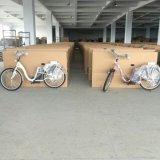 일본에 있는 최신 판매 전기 자전거 또는 전기 Bike/E 자전거 250W