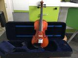 Hoch qualifizierte hoch entwickelte Qualitätsantike-Violine mit Violinen-Harz