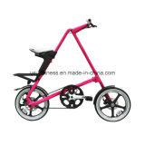 Faltendes Fahrrad mit Beutel (NY-FB001)