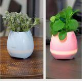Intelligenter Bluetooth Musik-Lautsprecher mit helle Noten-Pflanzenblumen-Potenziometern