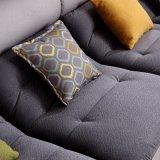 Sofá moderno de la tela de los nuevos del diseño muebles del hogar (FB1137)