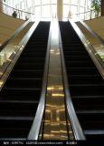 30 flacher Jobstepp-allgemeine Rolltreppe des Grad-3 für Metro-Station