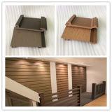 Neue Wände des Holz-WPC