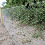 Sailinは農場の塀のための鉄ワイヤー網に電流を通した