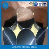 Decoratieve Spiegel 201 202 Cirkels van het Roestvrij staal