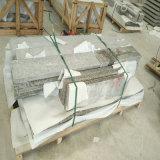 Pietra tombale/lapide/monumento di stile della Polonia fatto del granito di porpora G664